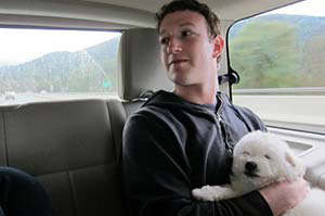 mark zuckerberg puppy beast mascota