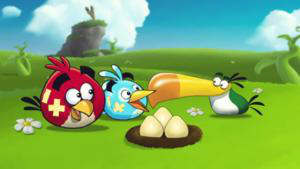 angry birds summer pignic